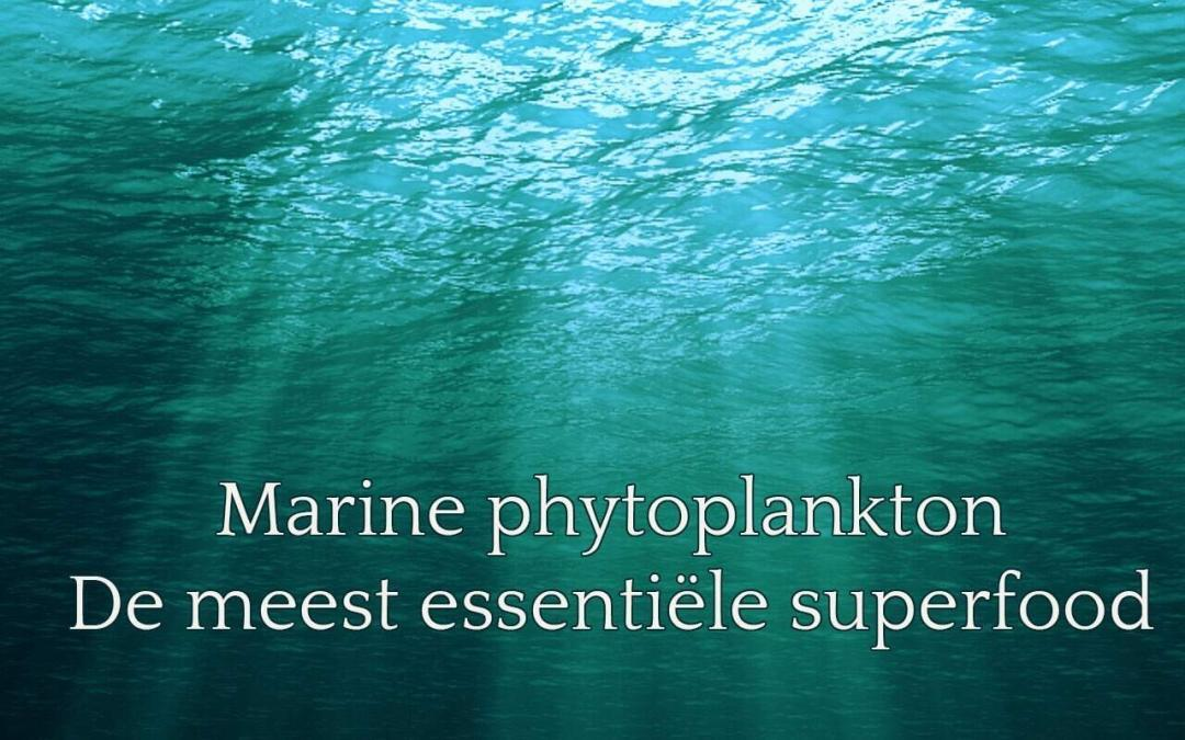 Wat is Marine Phytoplankton?